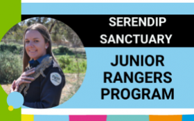 Image of Serendip Sanctuary Junior Rangers