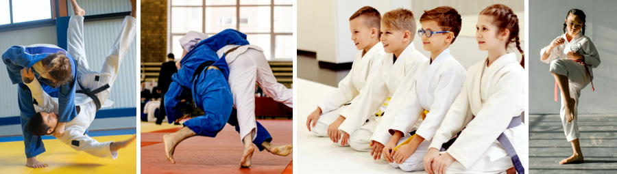 image of Judo